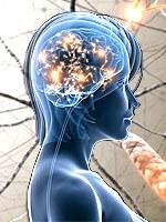 PQQ zapobiega degeneracji mózgu